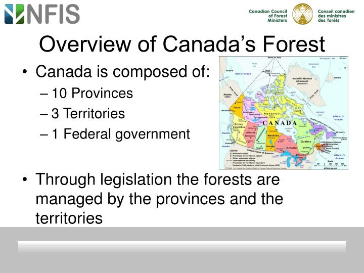 Overview of canada s forest