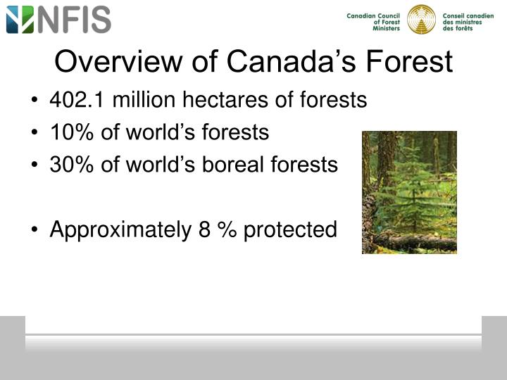 Overview of Canada's Forest
