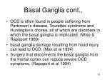 basal ganglia cont