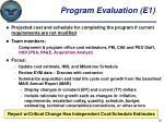 program evaluation e1