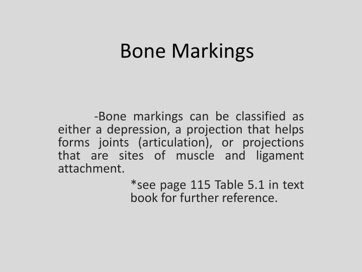 bone markings n.
