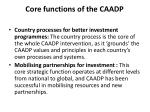 core functions of the caadp