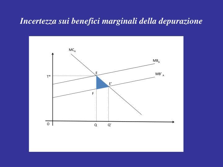 Incertezza sui benefici marginali della depurazione