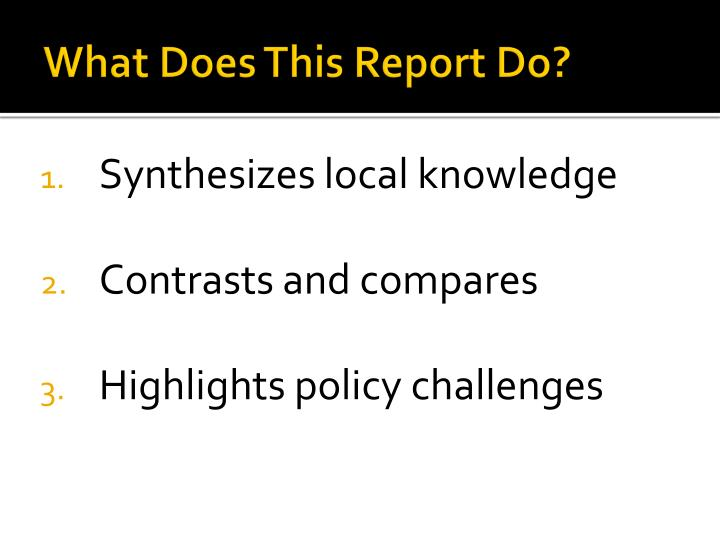 What Does This Report Do?