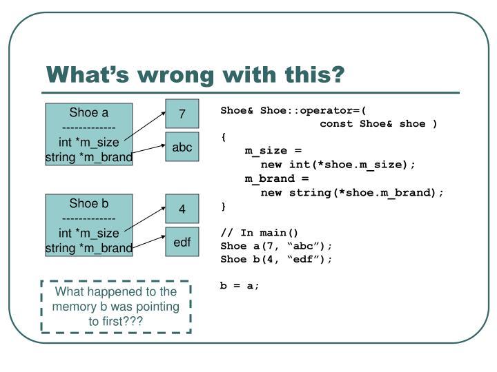 Shoe& Shoe::operator=(