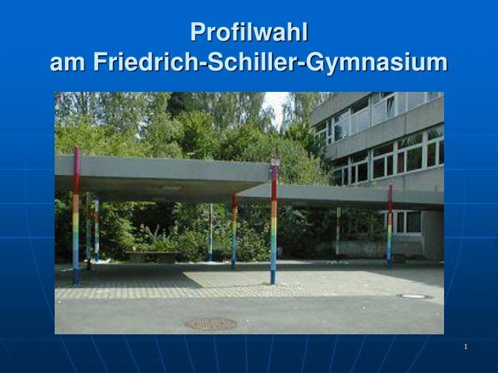 Profilwahl am friedrich schiller gymnasium