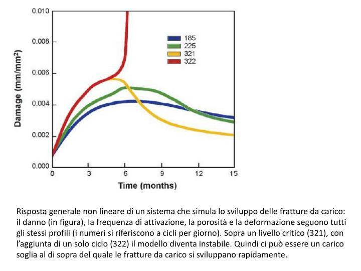 Risposta generale non lineare di un sistema che simula lo sviluppo delle fratture da carico: il danno (in figura), la frequenza di attivazione, la porosità e la deformazione seguono tutti gli stessi profili