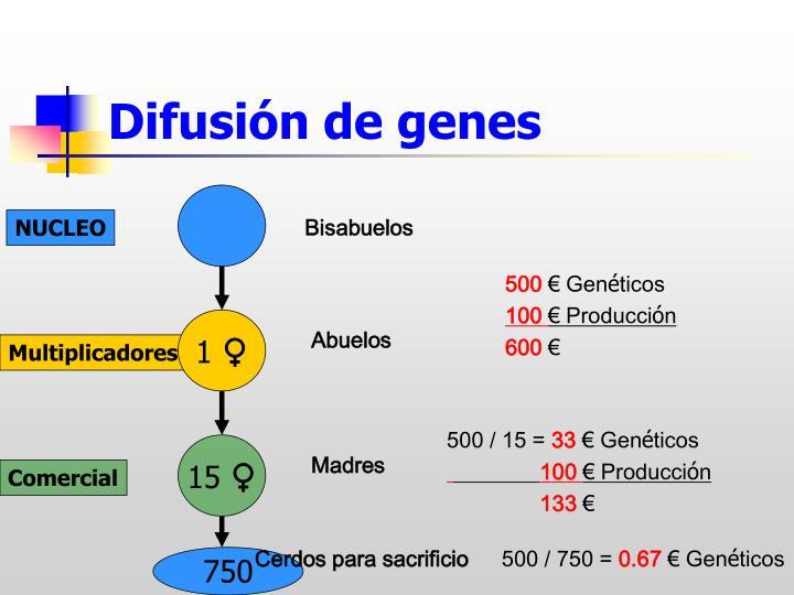 Difusión de genes