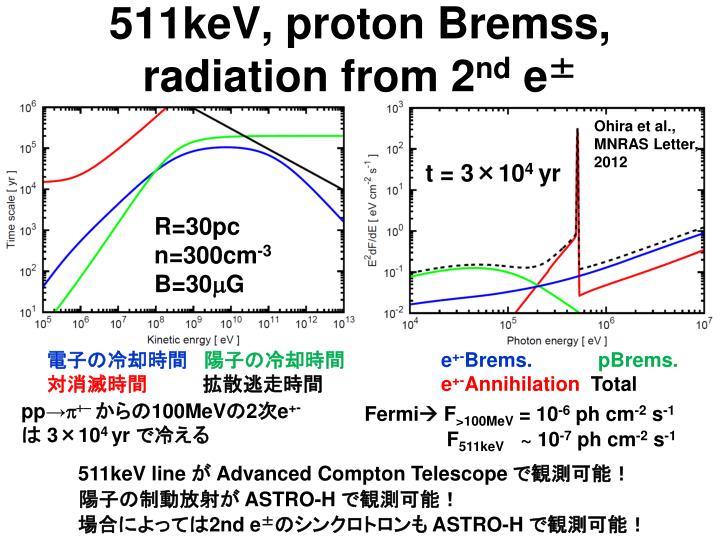 511keV, proton Bremss,