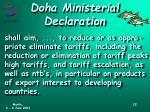 doha ministerial declaration