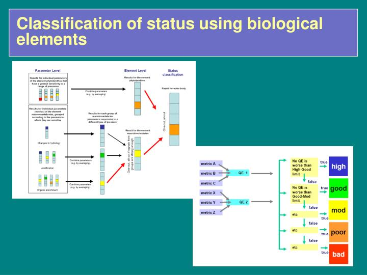 Classification of status using biological elements