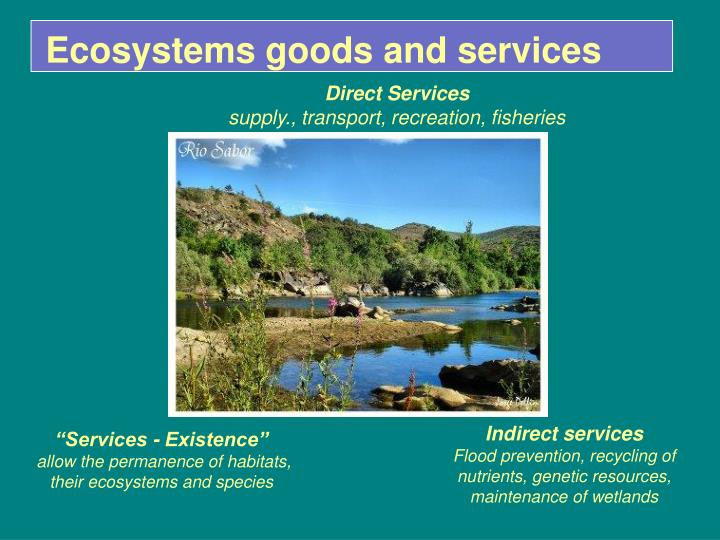 Ecosystems goods and services