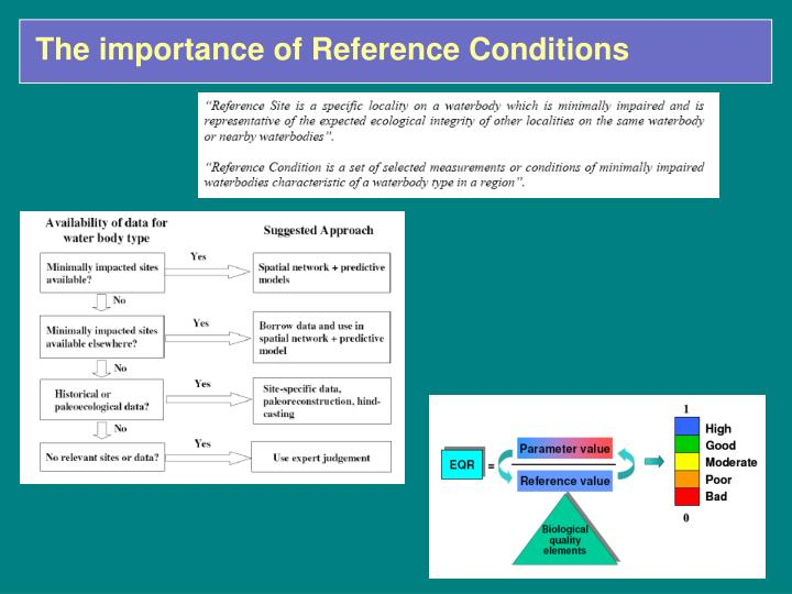 The importance of Reference Conditions
