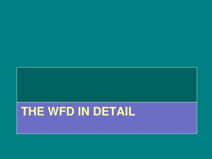 The WFD in detail