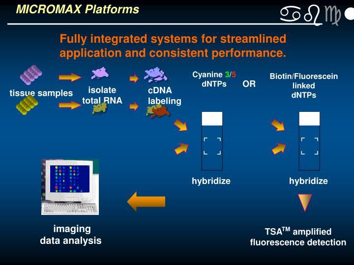 MICROMAX Platforms