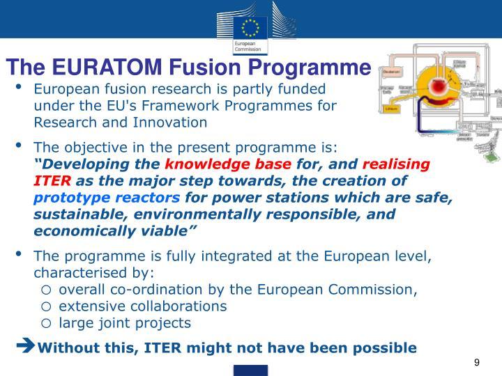 The EURATOM Fusion Programme