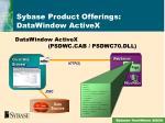 sybase product offerings datawindow activex1