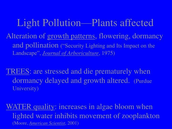 Light Pollution—Plants affected