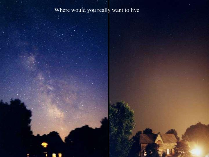 Where would you really want to live