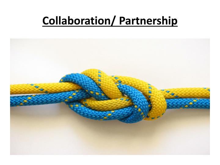 Collaboration/ Partnership