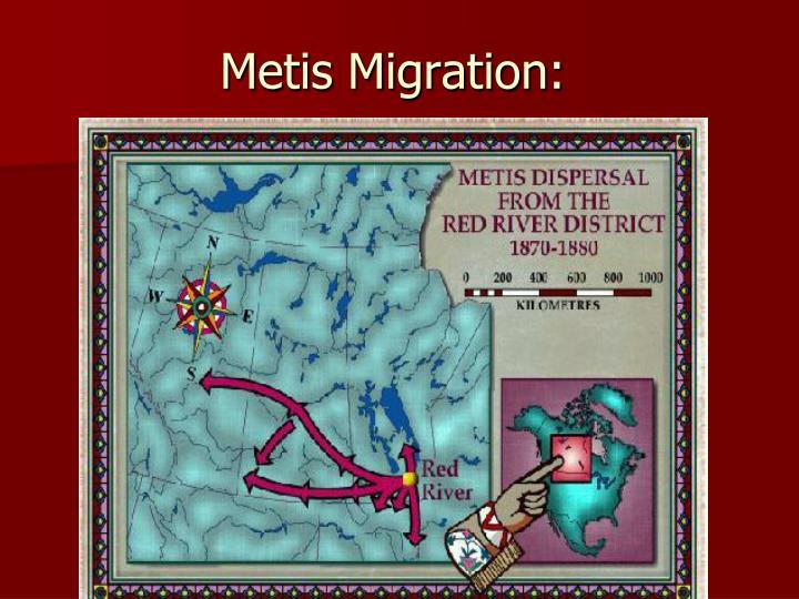 Metis Migration: