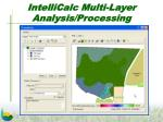 intellicalc multi layer analysis processing