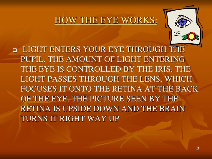 HOW THE EYE WORKS: