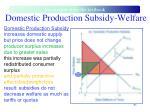domestic production subsidy welfare