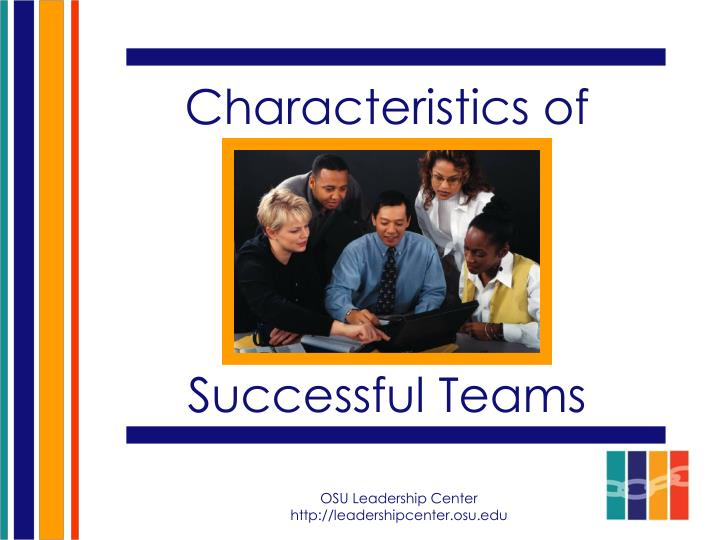 characteristics of successful teams n.