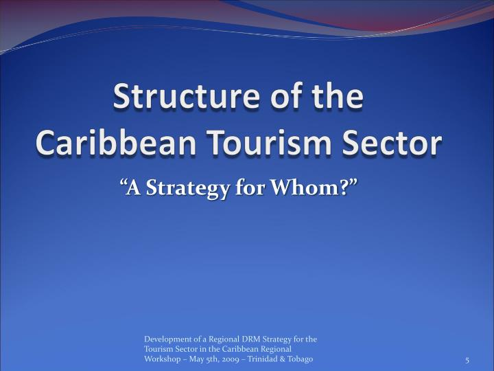 Structure of the Caribbean Tourism Sector