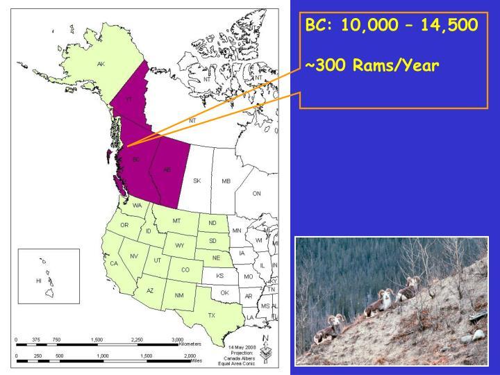 BC: 10,000 – 14,500