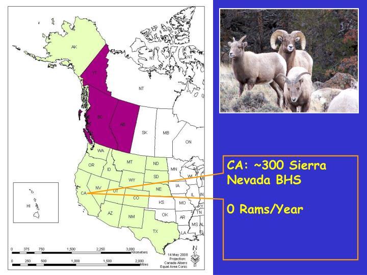 CA: ~300 Sierra Nevada BHS