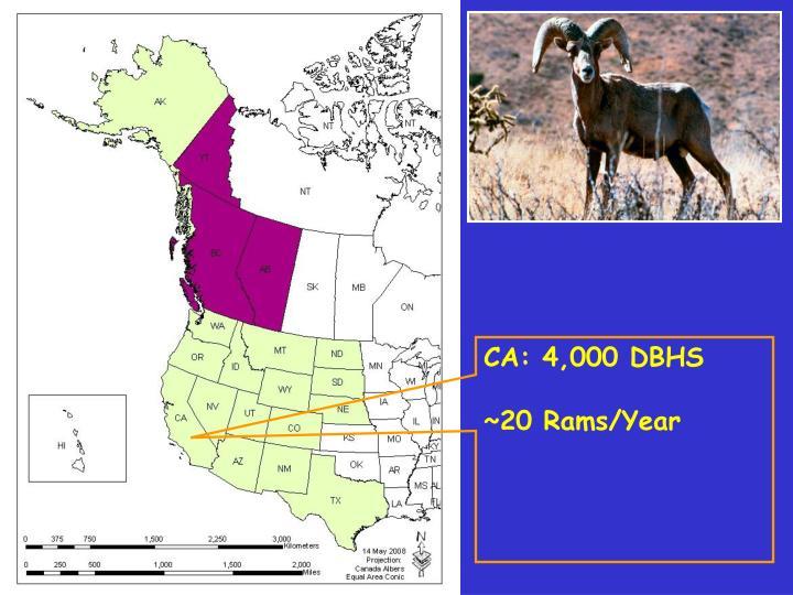 CA: 4,000 DBHS