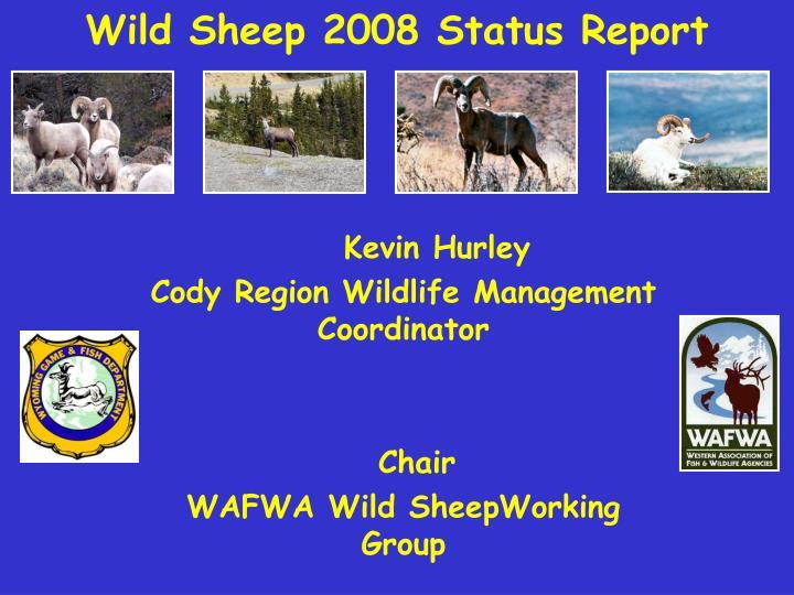 Wild sheep 2008 status report