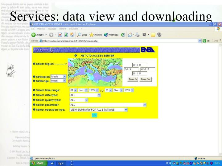 Services: data view and downloading
