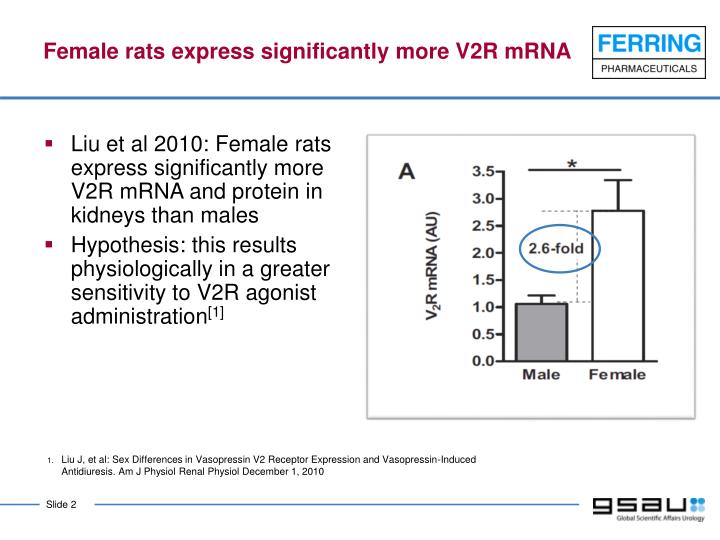 Female rats express significantly more v2r mrna