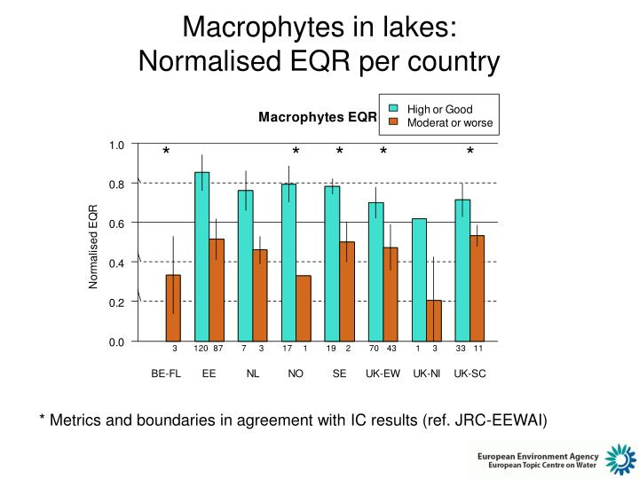 Macrophytes in lakes: