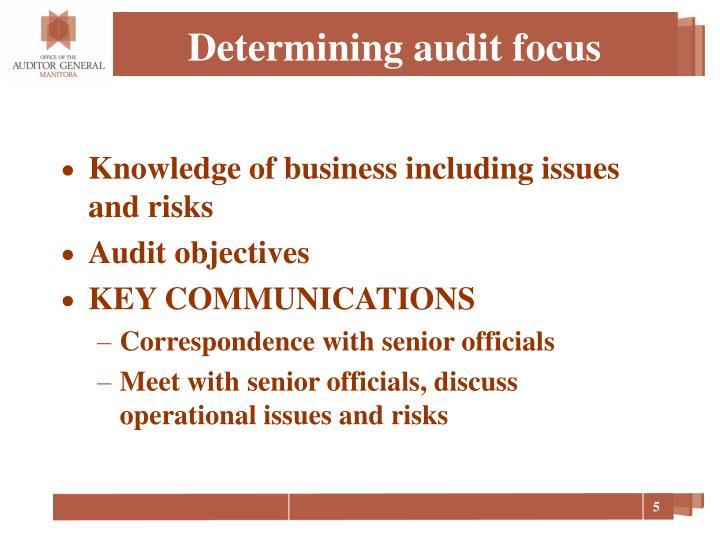 Determining audit focus