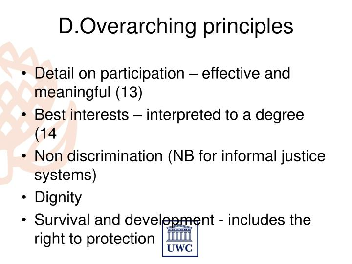 D.Overarching principles