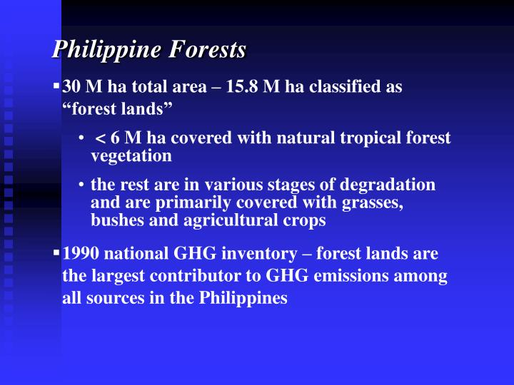 Philippine Forests