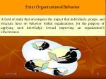 enter organizational behavior