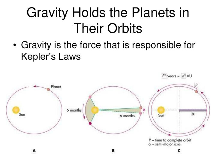 Gravity Holds the Planets in Their Orbits
