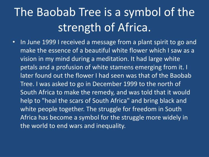 The Baobab Tree is a symbol of the strength of Africa.