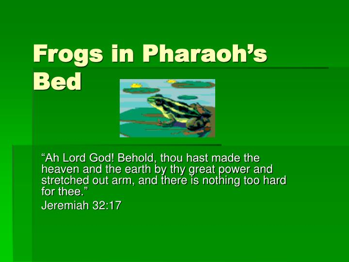 frogs in pharaoh s bed n.