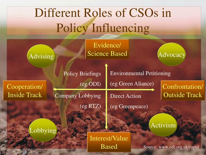 Different Roles of CSOs in Policy Influencing