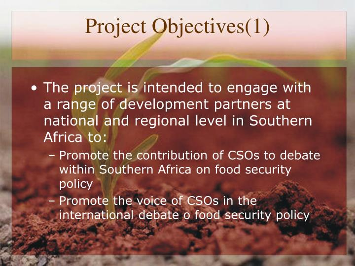 Project Objectives(1)