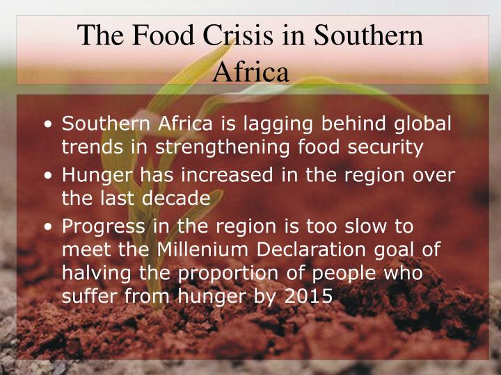 The food crisis in southern africa