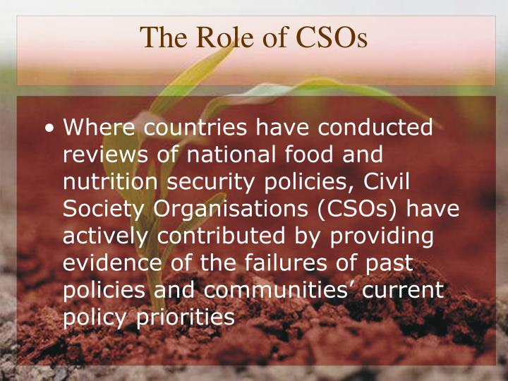 The Role of CSOs