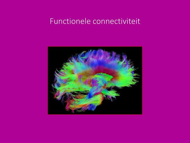 Functionele connectiviteit