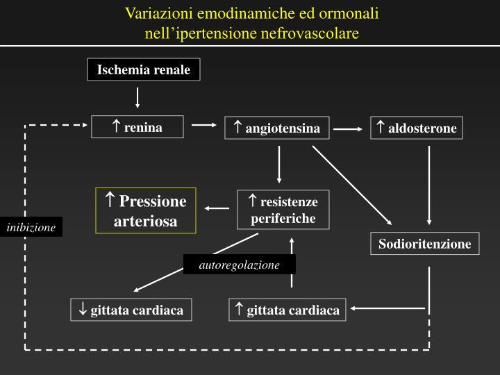 PPT - Ipertensione nefrovascolare e nefropatia ischemica..